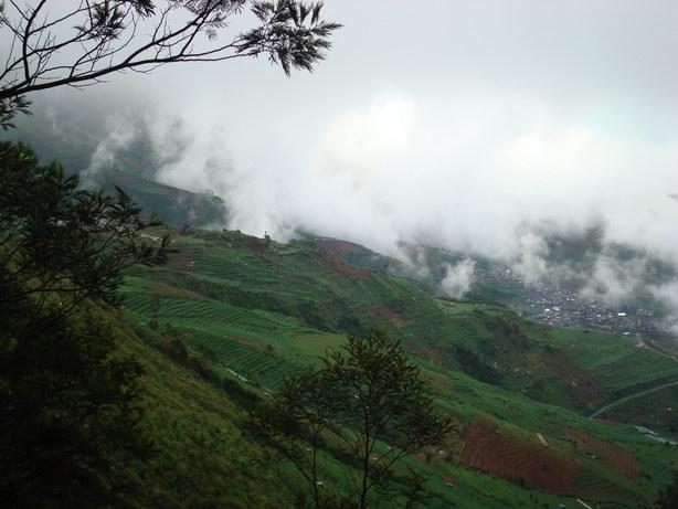 Bukit Sikunir
