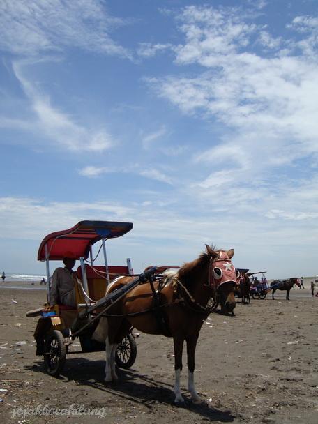 kereta kuda di Pa-Ris ( Parang Tritis )