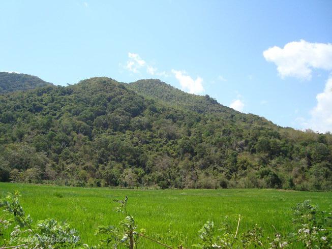 hamparan bukit hijau menuju Ruteng
