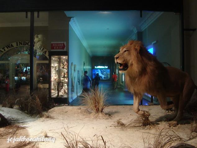 Singa di tengah display kaca