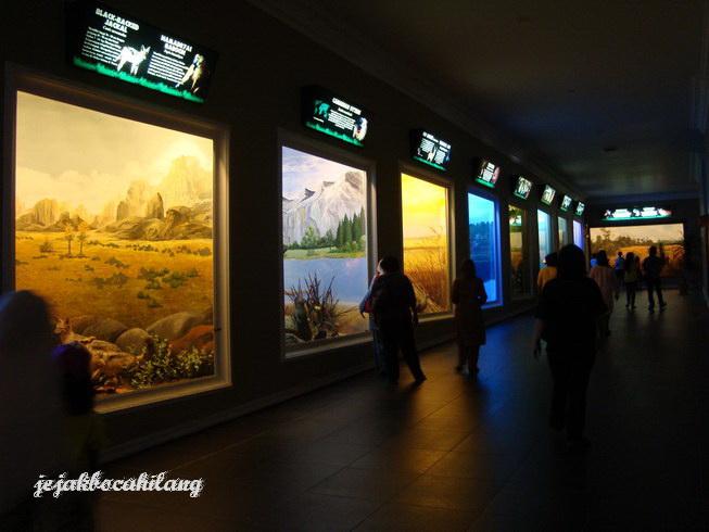 display keren di Museum Satwa - Batu