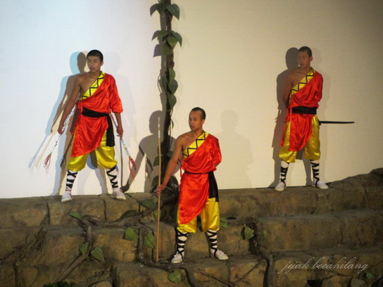 shaolin show at Ngong Ping village