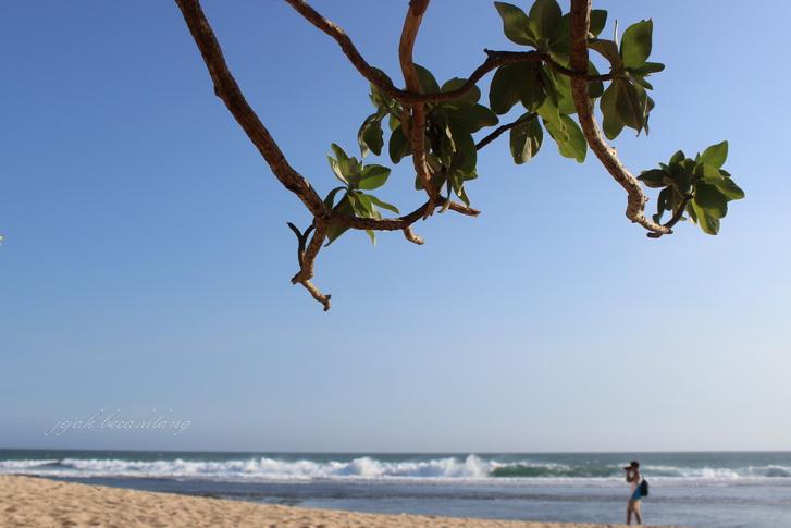 Pok Tunggal beach - Jogja