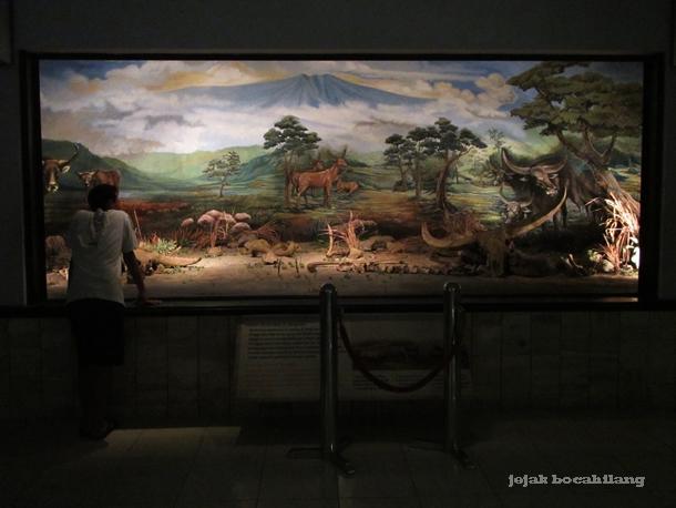 diorama Museum Krikilan Sangiran