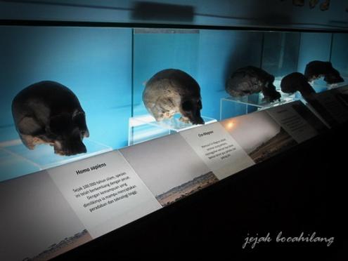 Museum Sangiran Sragen