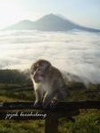 narsis di Gunung Batur