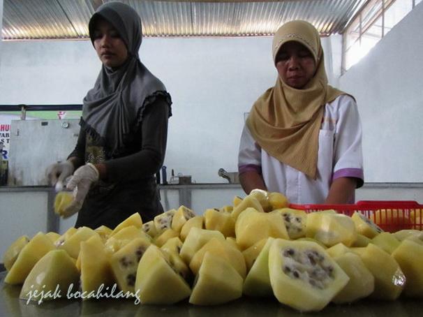 mengupas buah Carica