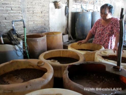 drum-drum adonan ciu Bekonang dengan pengolahan tradisional