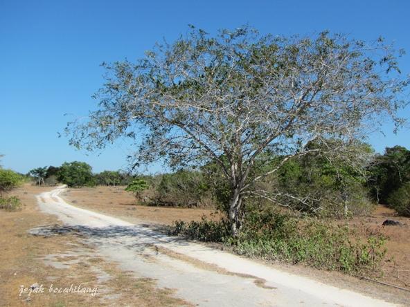 jalan menuju Goa Letbaun