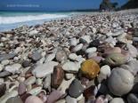 Pantai Kolbano Kupang Timor