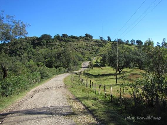 road to Alpen van Timor