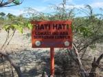 semburan lumpur di Pulau Semau
