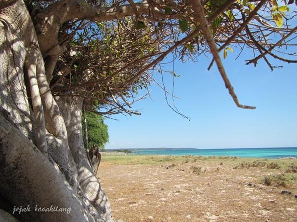 Pantai Uihmake