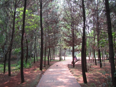 Hutan Kota 2 BSD City