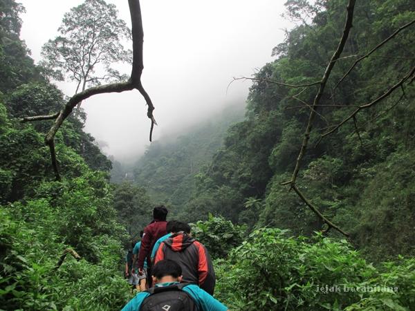 kabut di tengah perjalanan menuju Air Terjun Madakaripura