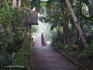 suasana Desa Kalisari