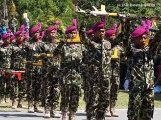 kolone senapan TNI AL