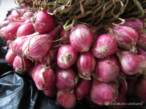 bawang merah Brebes