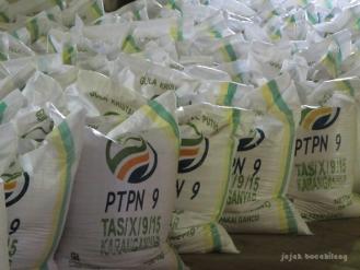 gula kristal Tasikmadu PTPN IX