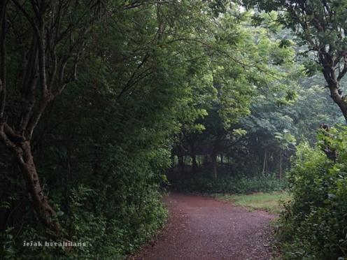 Dusun Koalas Desa Ketetang