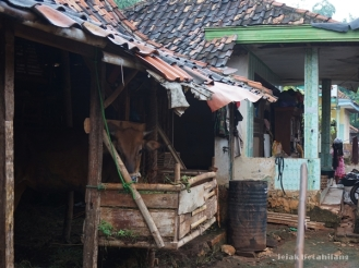 rumah di Desa Ketetang