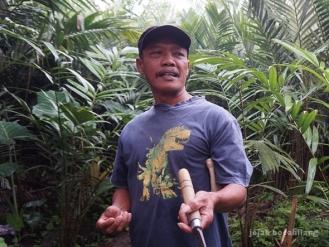 petani salak di Pancoh