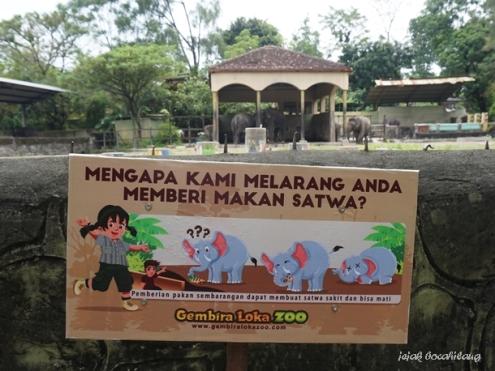 gajah Gembira Loka Zoo