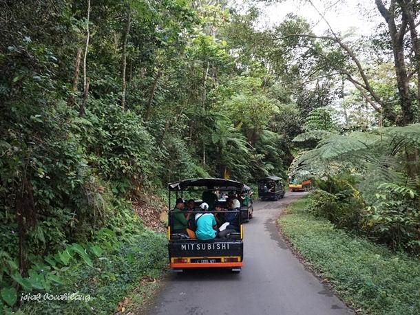 jjalan menuju Petungkriyono