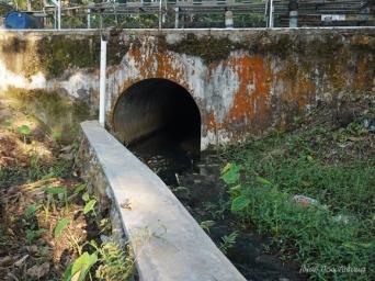 bekas jembatan kereta pabrik gula Wonopringgo