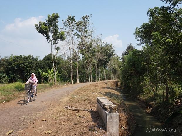 kesederhanaan hidup di Desa Wonopringgo