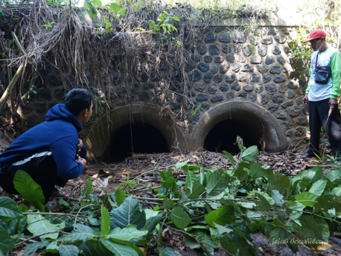 suling loro Desa Wonopringgo