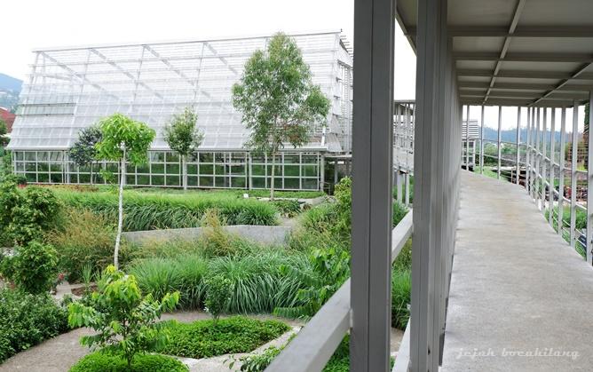 Atsiri Garden