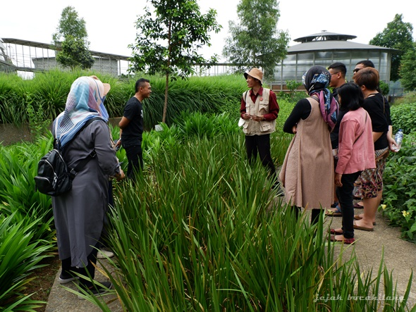 tour taman Rumah Atsiri